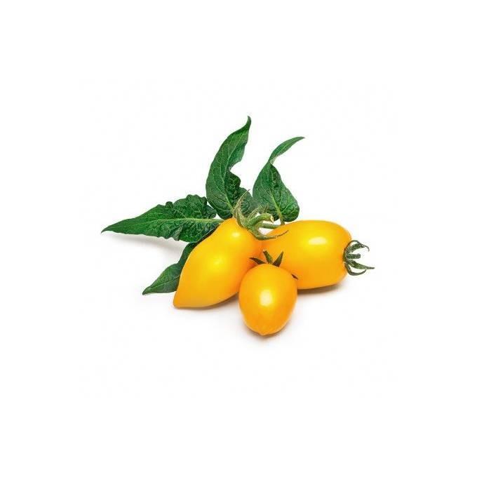 Véritable Lingot Mini žlutá rajčata