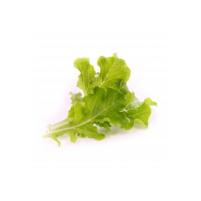 Véritable Lingot Dubový salát