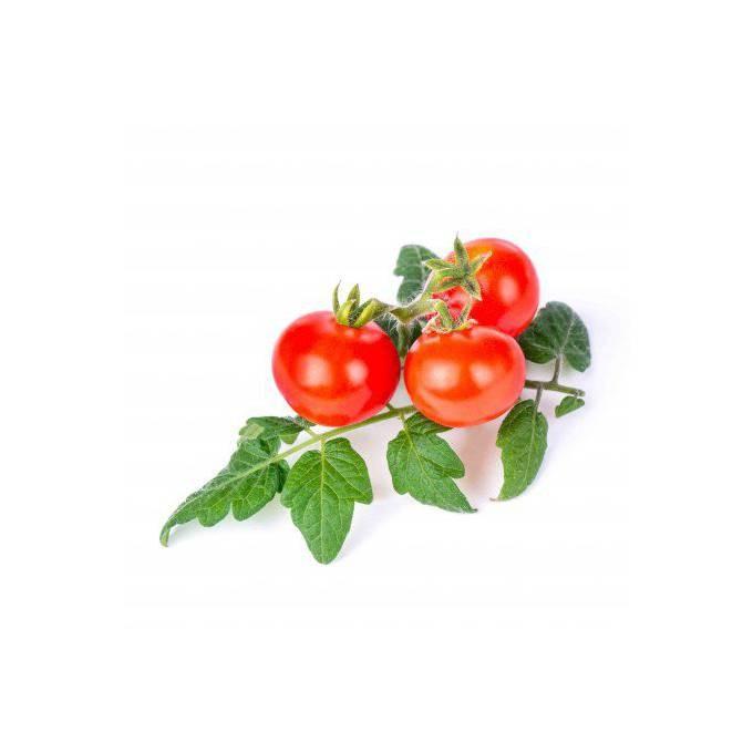 Véritable Lingot Cherry rajčata